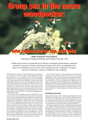 Group sex in the acorn woodpecker - Department of Neurobiology ...