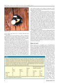 Group sex in the acorn woodpecker - Department of Neurobiology ... - Page 4
