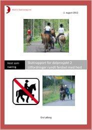Sluttrapport for delprosjekt 2 - Utfordringer rundt ... - Lier kommune