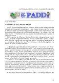 PADDI: una nuova iniziativa di formazione e certificazione degli ... - Page 2