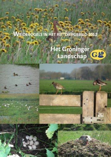 weidevogels in het reitdiepgebied 2012 - Stichting Het Groninger ...
