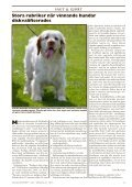 Doggy Rapport 3 - 2012 - Doggy Professional - Page 7