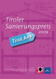 PDF Tiroler Sanierungspreis 2009