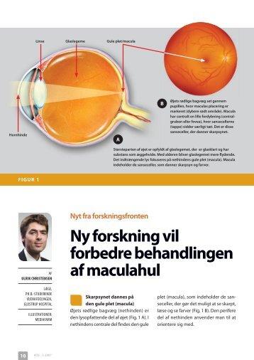 ny forskning vil forbedre behandlingen af maculahul Nyt fra ...