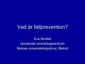 OH Nätverksträff 101027 Fallprev.pdf