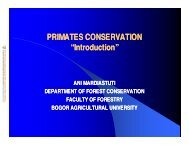 """PRIMATES CONSERVATION """"Introduction"""""""