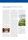 Corporate energy and material Efficiency - WISIONS of Sustainability - Page 3