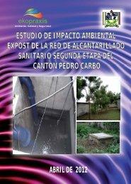 EsIA Expost AASS II Pedro...