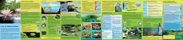 Bassins de jardin (PDF, ca. 2,5 MB) - Dennerle