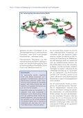 Pharmazeutische Rückstände in der ... - The PILLS-Project - Seite 6