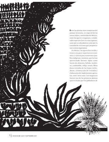 agaves - Página del Alumno - UNAM