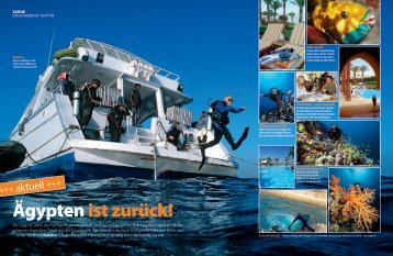 Tauchen, Juni 2011 (3 MB, pdf) - Camel Dive Club and Hotel