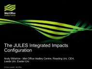 The JULES Integrated Impacts Configuration