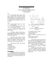 gunes-pilleri-ve-ozellikleri - 320Volt