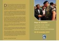 Stage de formation La gestion civilo-militaire des crises ... - IHEDN