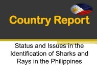 Status and Issues in the Identification of Sharks and Rays ... - Seafdec
