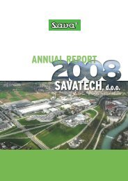 Annual Report 2008 - Savatech