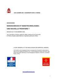 Nanosciences et nanotechnologies - Mission d'animation des ...