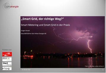 Smart Grid, der richtige Weg? - DSV