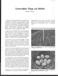 Conservation Tillage and W-Idlife