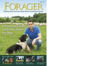 The Forager Spring 2013 - British Seed Houses