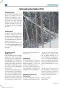 (5,03 MB) - .PDF - Marktgemeinde Rum - Seite 6