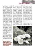 Julio 2012 - Llamada de Medianoche - Page 5