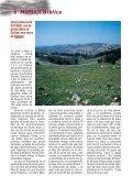 Julio 2012 - Llamada de Medianoche - Page 6