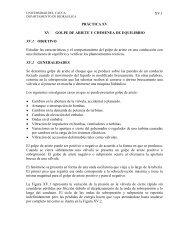 Golpe de Ariete - Universidad del Cauca