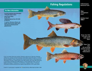 Fishing Regulations - Yellowstone Up Close and Personal