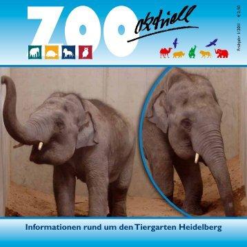 Zoo aktuell 1 / 2011 - Tiergartenfreunde Heidelberg eV