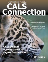 CALS Student Making Strides In Jaguar Conservation - College of ...