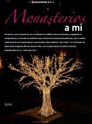 Monasterios, a mi - Revista DINTEL Alta Dirección