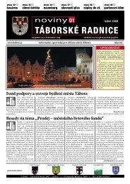 Noviny Táborské Radnice 2008 - Leden