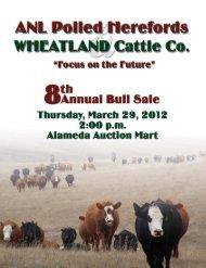 Bar T Ranch - Bouchard Livestock International