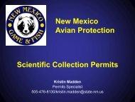 NMDGF Scientific Collection Permits by Kristin Madden