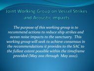 Joint Working Group on Vessel Strikes and Acoustic Impacts Update