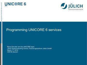 Programming UNICORE 6 services