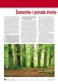 broj 37 - DRVOtehnika - Page 6