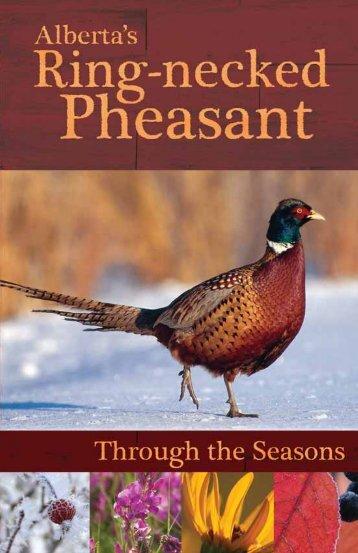 Alberta's Ring-necked Pheasant - Alberta Conservation Association