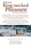 Alberta's Ring-necked Pheasant - Alberta Conservation Association - Page 4