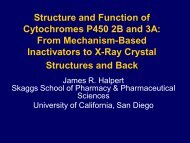 Twenty-five years of Research on Cytochromes P450 2B: To ...