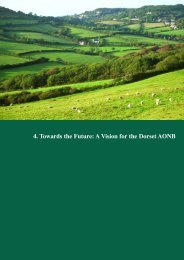4. Towards the Future: A Vision for the Dorset AONB