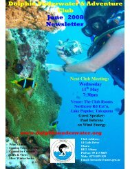 Dolphin Underwater & Adventure Club June 2008 Newsletter