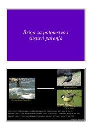 \Ponašanje životinja\12 Briga za potomstvo i sustavi parenja (manji ...