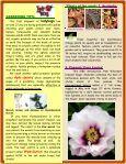 Rubicon Organics - Hanna & Hanna Orchards - Page 2