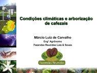 Marcio Luiz de Carvalho - Fazendas Reunidas Laia e Souza