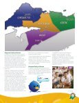 Report - Chignecto-Central Regional School Board - Page 5