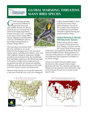 global warming threatens many bird species - American Bird ...