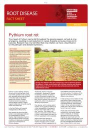 Pythium root rot - Grains Research & Development Corporation